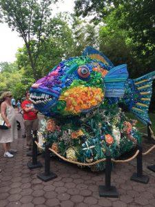 colorful fish art display