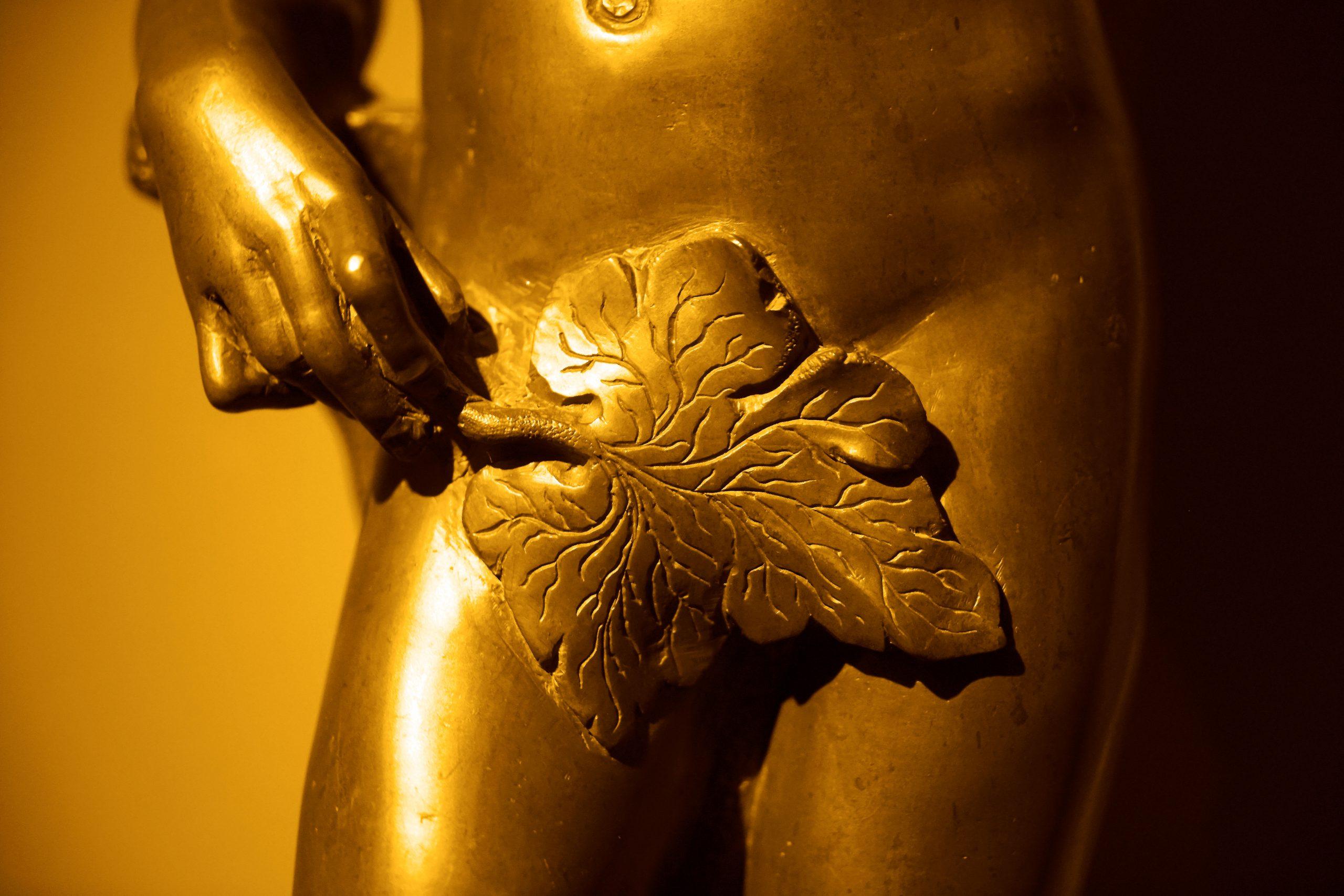 Sculpture with fig leaf