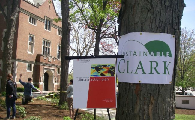 clark banners around tree