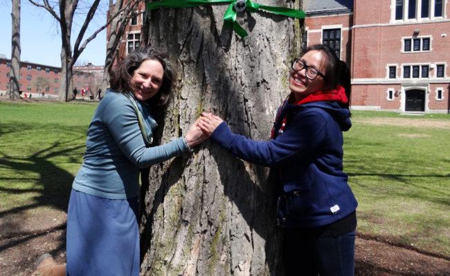 girls hugging trees