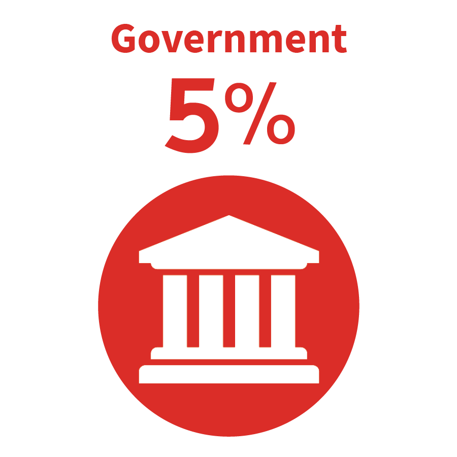 graphic - Government 5%