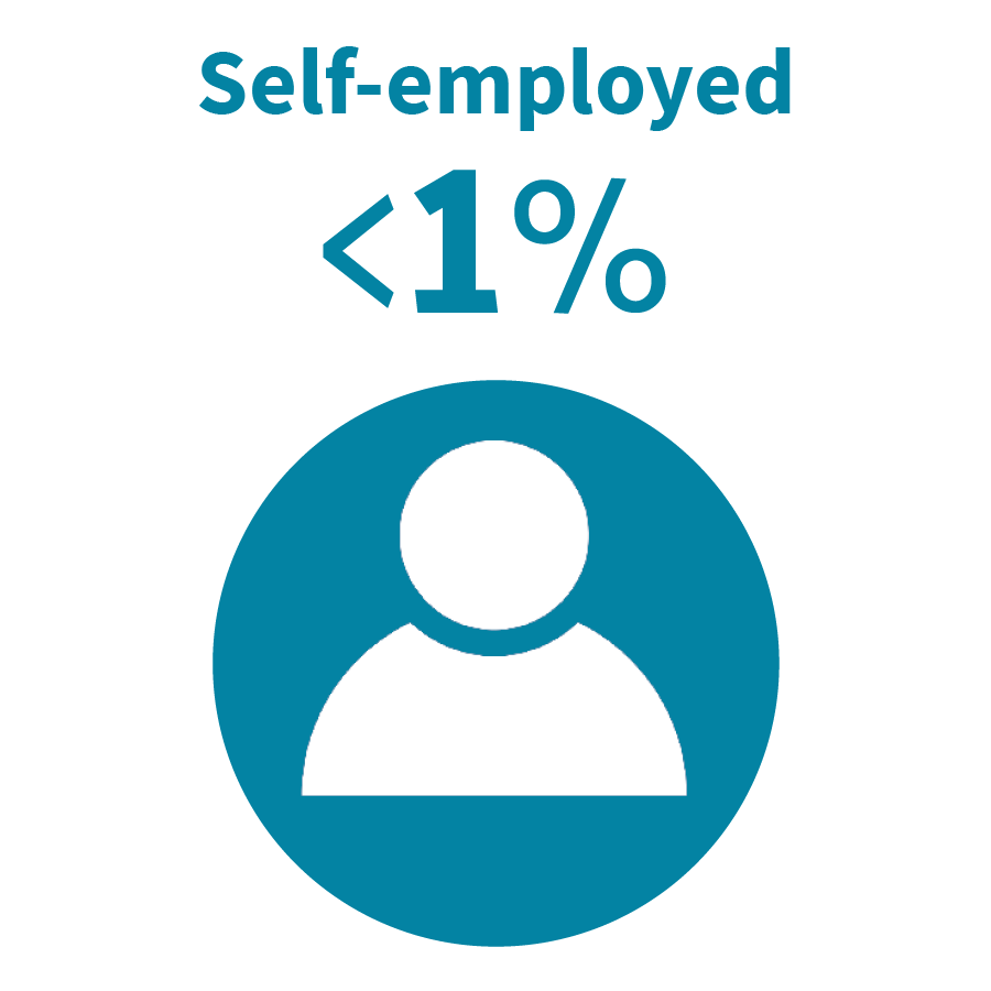 grahic - self-employed 1%