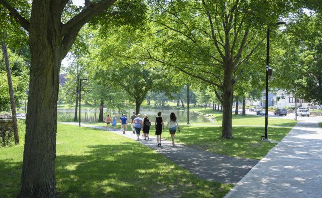 community wak in park