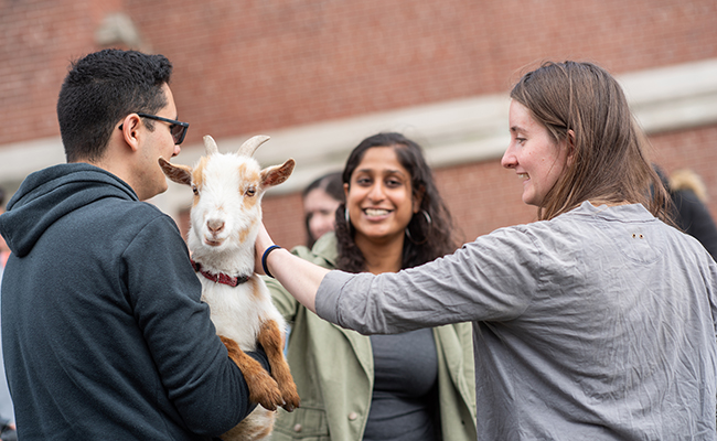 students patting goat