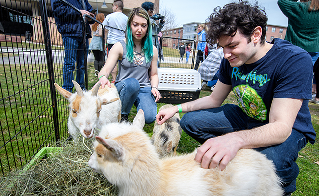 students petting goats in cage